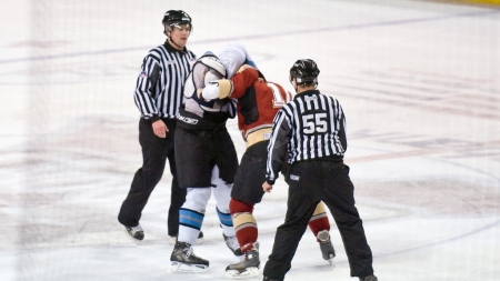 The National Hockey League bans fighting for players and opens it up for fans