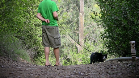 Billy Neepawa advocates for an off leash cat park for Portage la Prairie